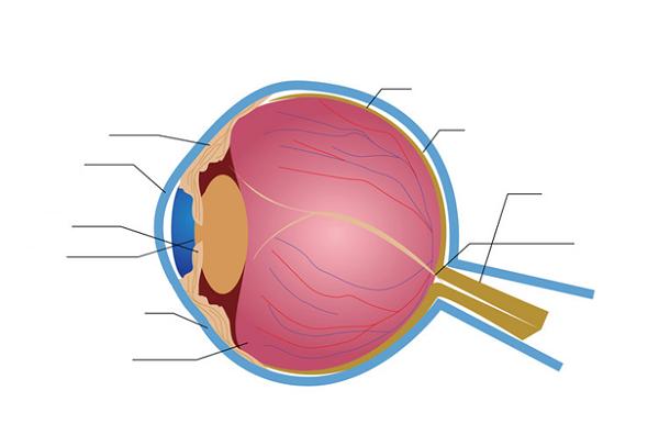 eye diagram quiz