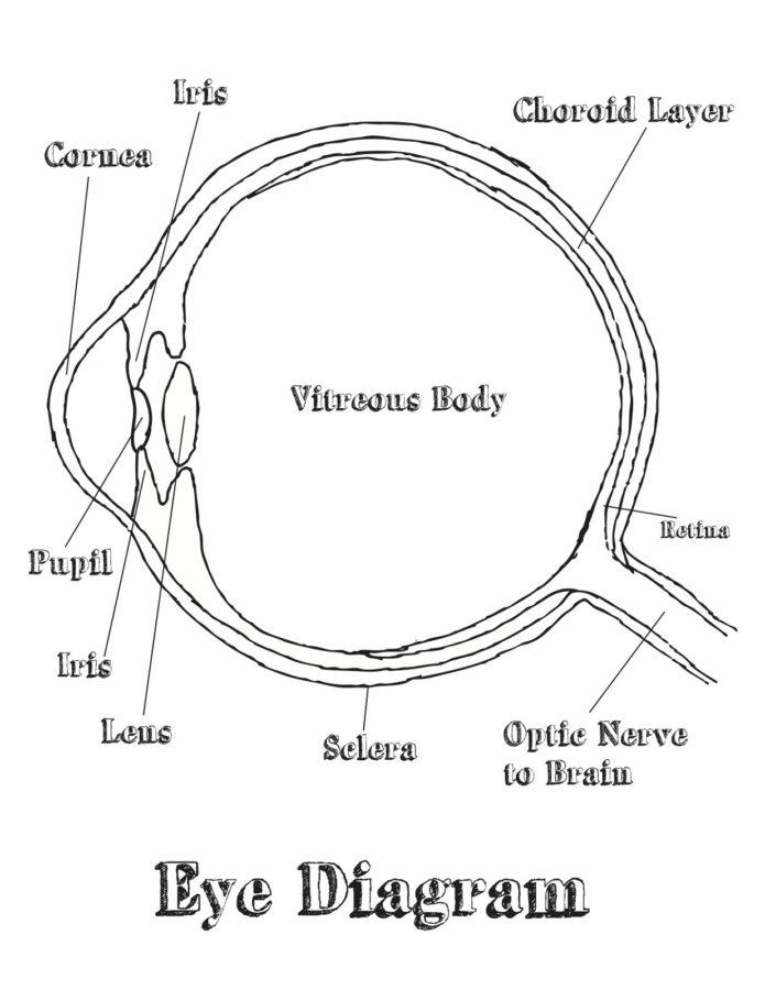 eye diagram standard