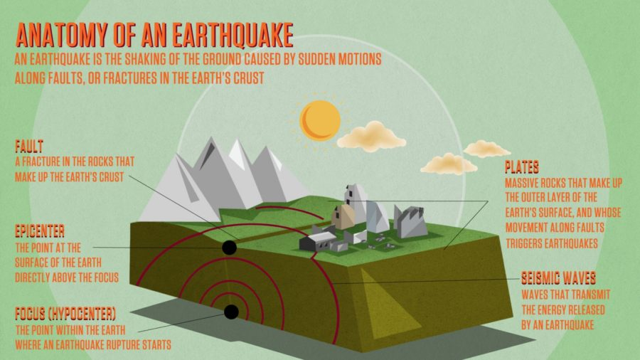 earthquake diagram anatomy