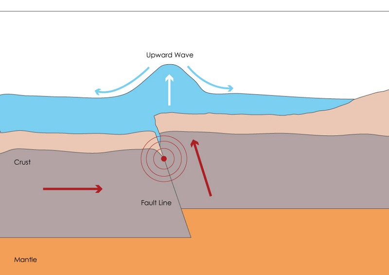 earthquake diagram tsunami