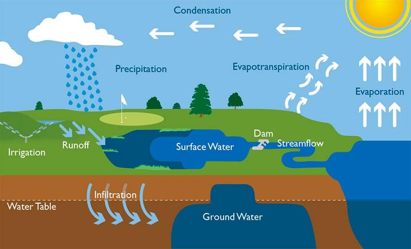 water cycle diagram school