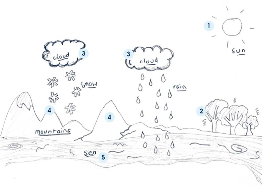water cycle diagram simple