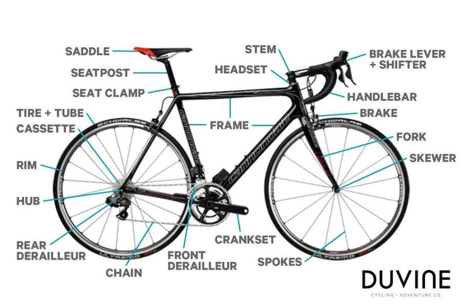 bicycle parts diagram mountain