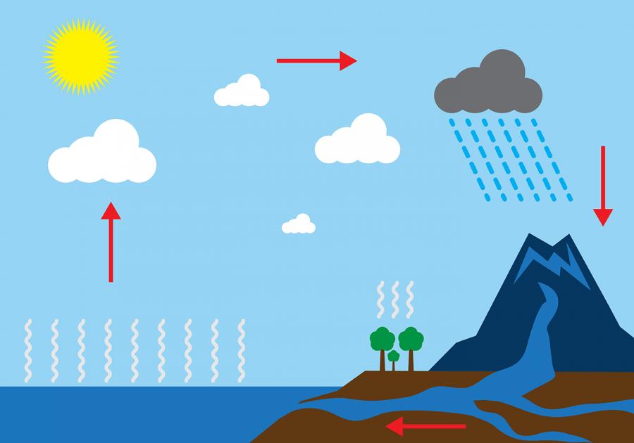 diagram of water cycle blank