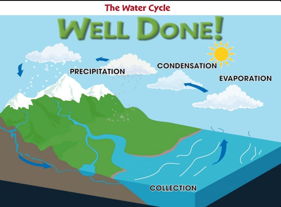 diagram of water cycle image