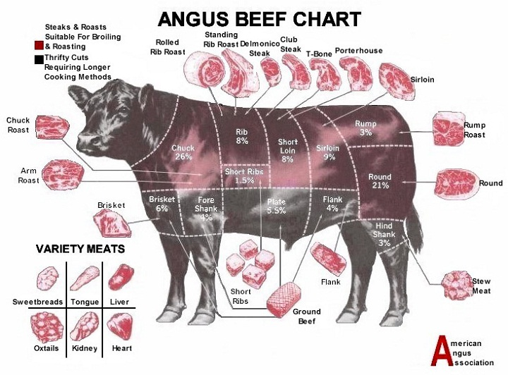 cuts of beef diagram cow