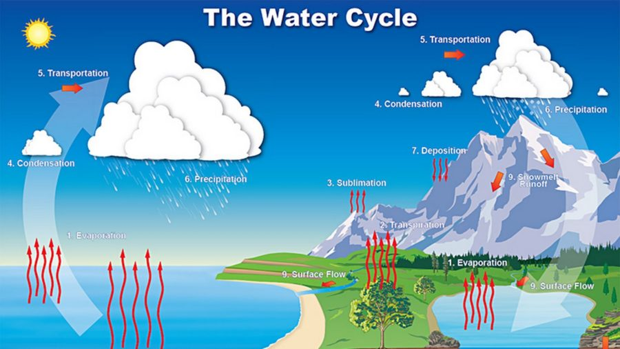 the water cycle diagram pics