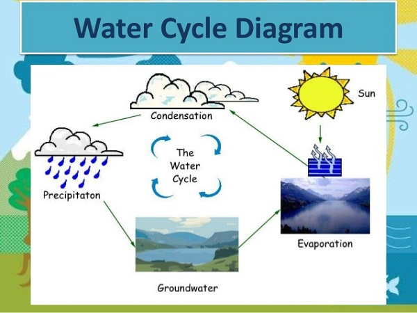 the water cycle diagram simple