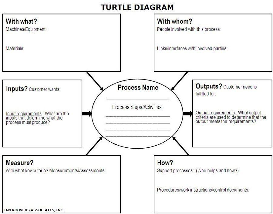 turtle diagram process