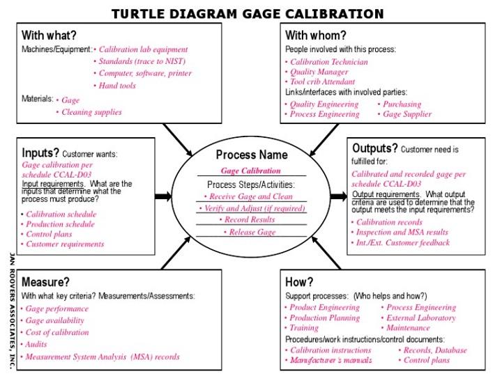 turtle diagram process example