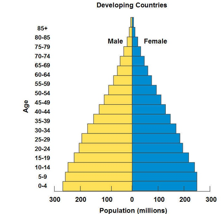 age structure diagram population