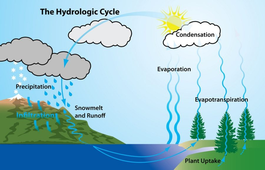 diagram of the water cycle detailed