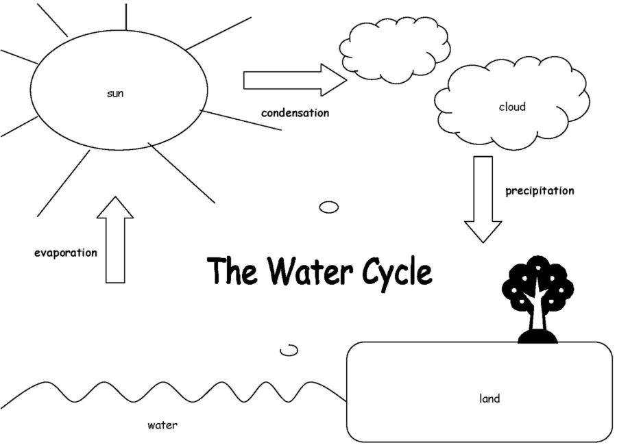 diagram of the water cycle simple