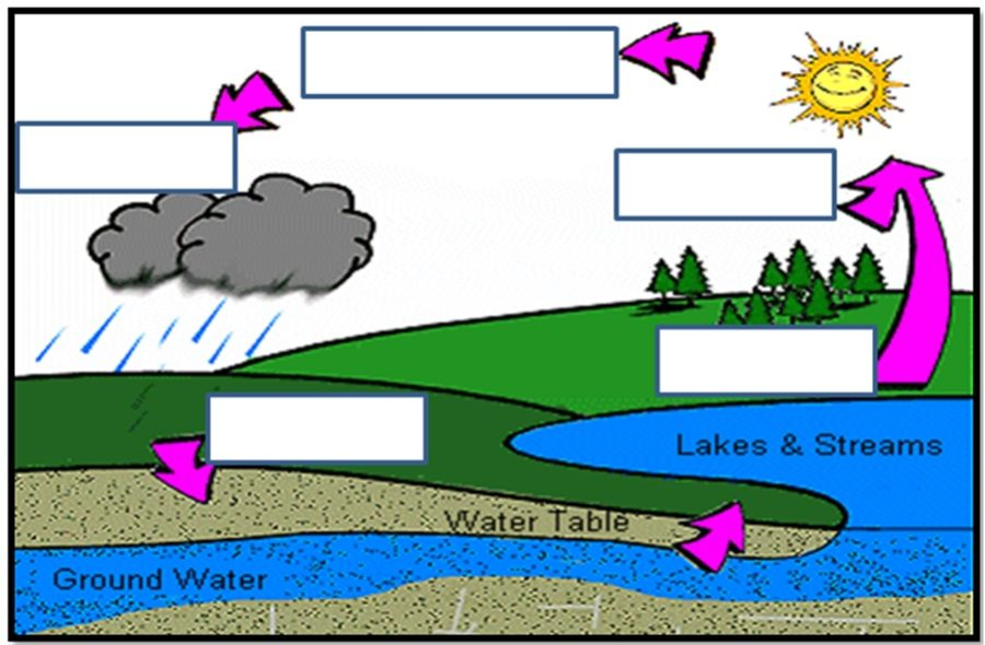 diagram of the water cycle unlabeled