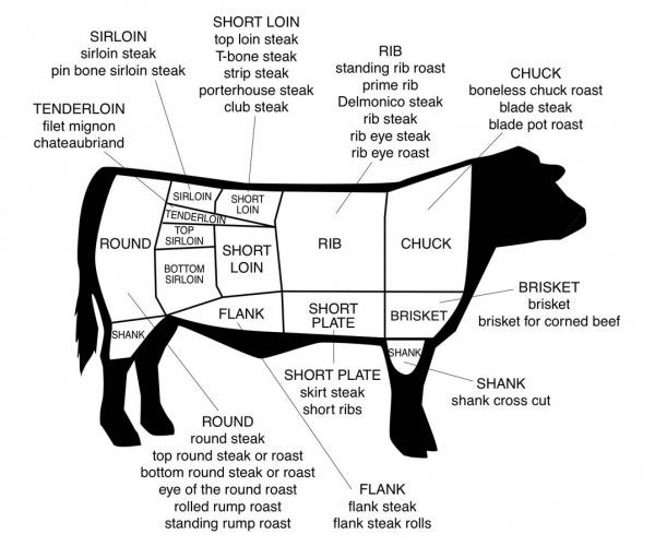 beef diagram cow