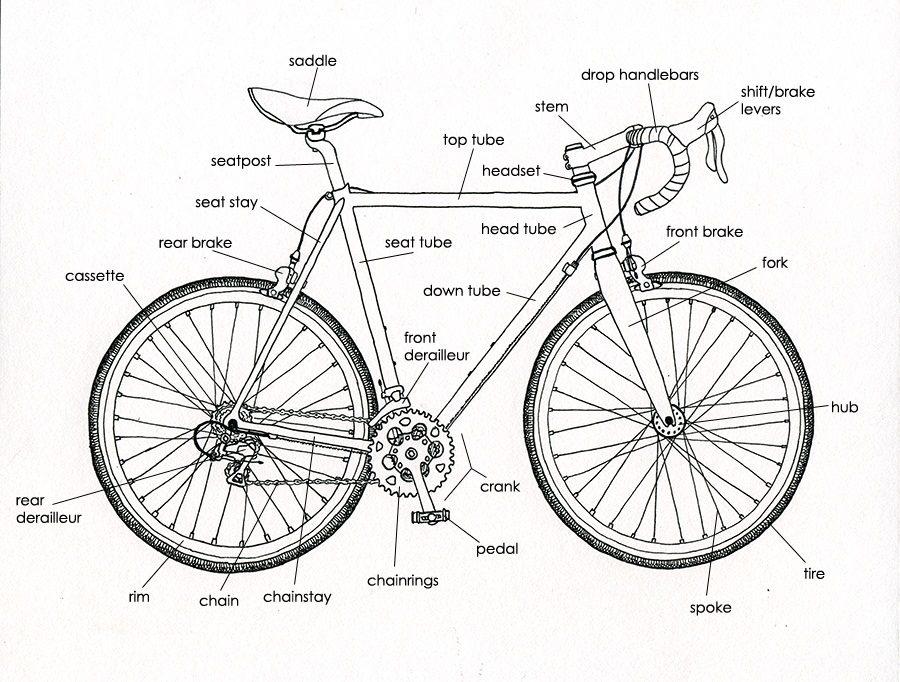 bicycle diagram bracket