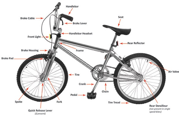 bicycle diagram for kids