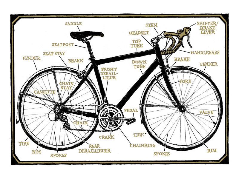 bicycle diagram structure