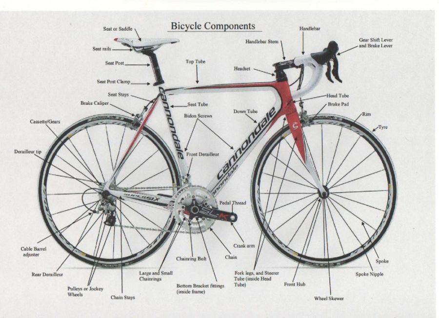 bike parts diagram components