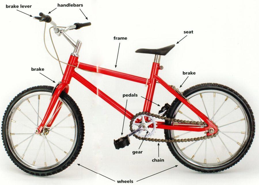 bike parts diagram simple