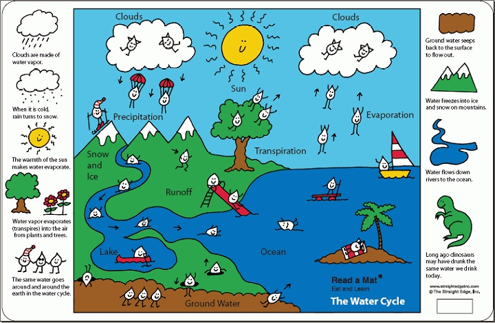water cycle diagram for kids funny