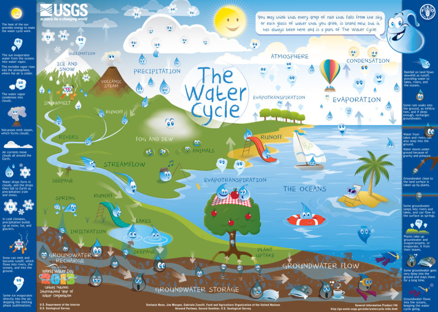 water cycle diagram for kids poster