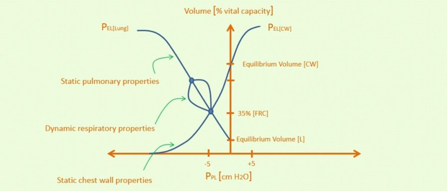 campbell diagram respiratory