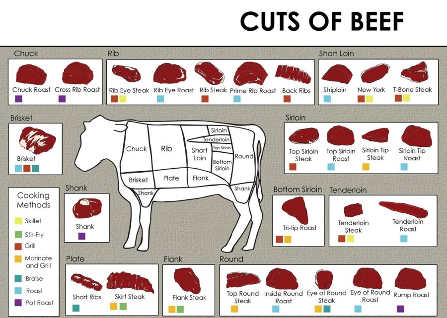 cuts of beef diagram free