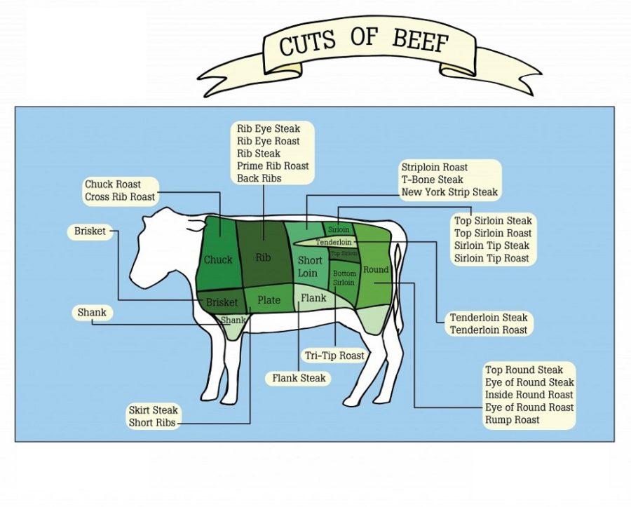 cuts of beef diagram page