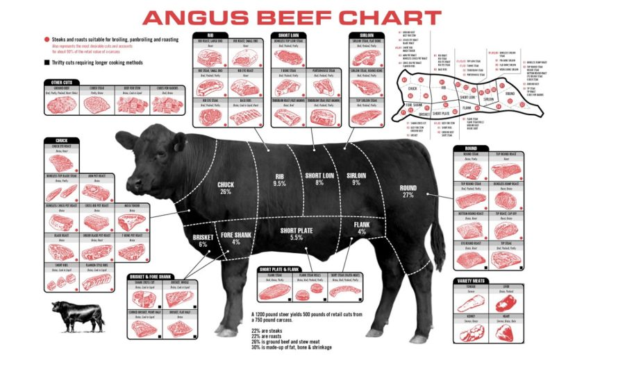 cuts of beef diagram picture