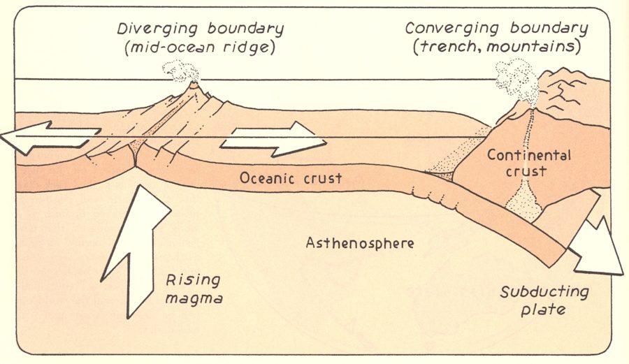 ocean floor diagram labeled