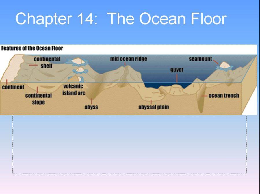 ocean floor diagram landforms