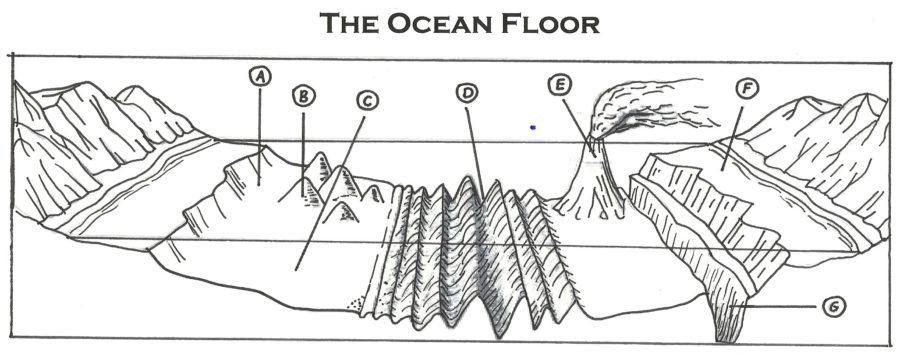 ocean floor diagram unlabeled