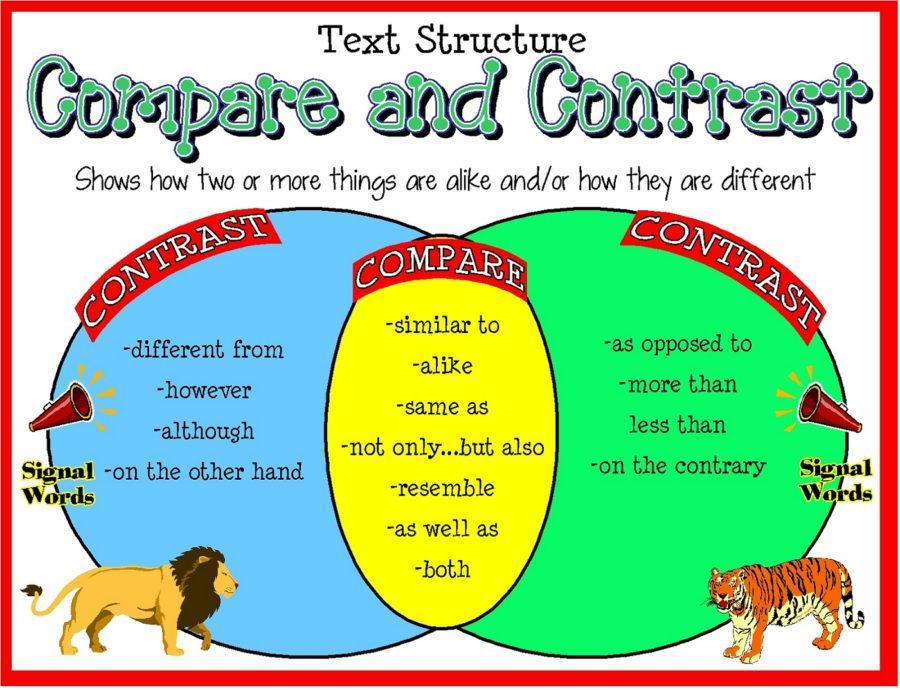 venn diagram worksheet for kids