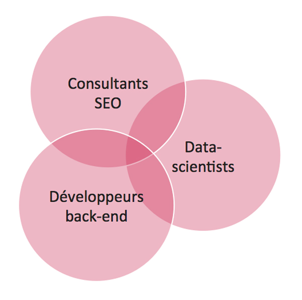 venn diagram worksheet pink