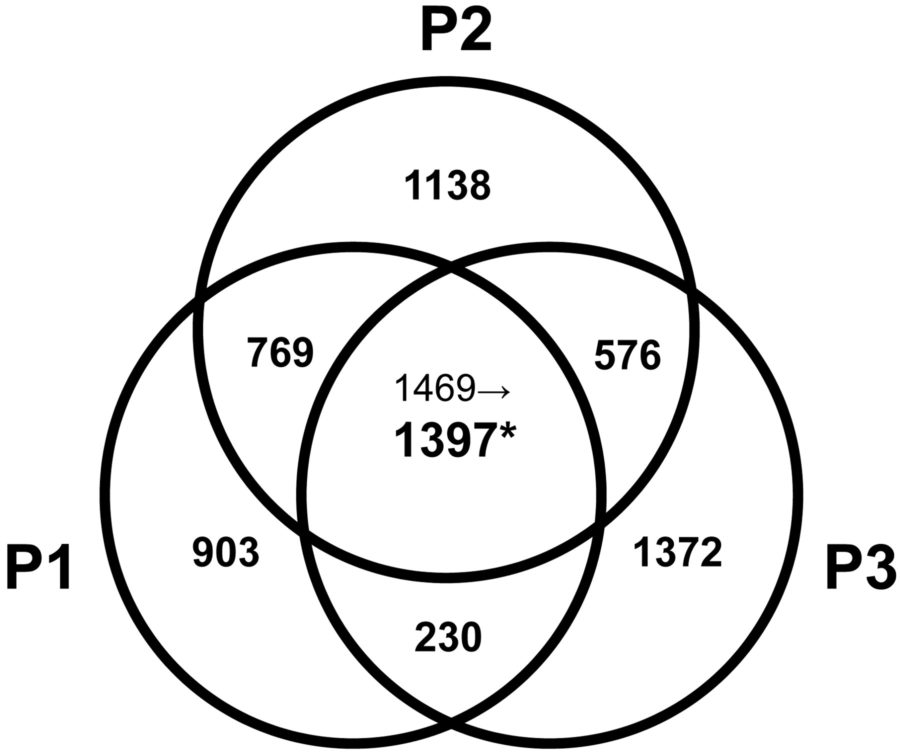 venn diagram math questions