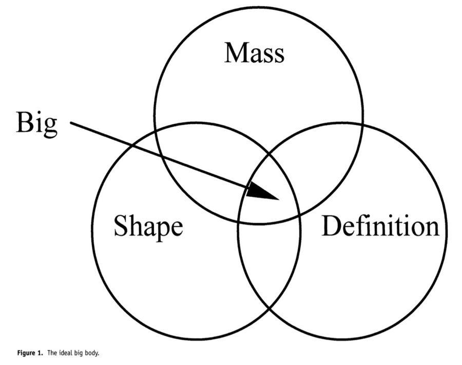 venn diagrams pdf