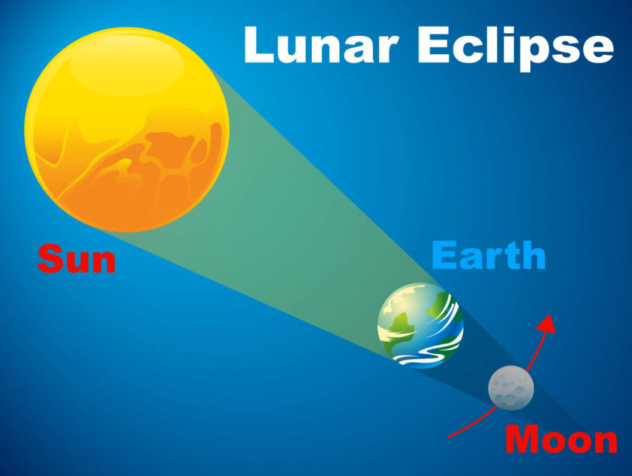 Partial Lunar Eclipse Diagram