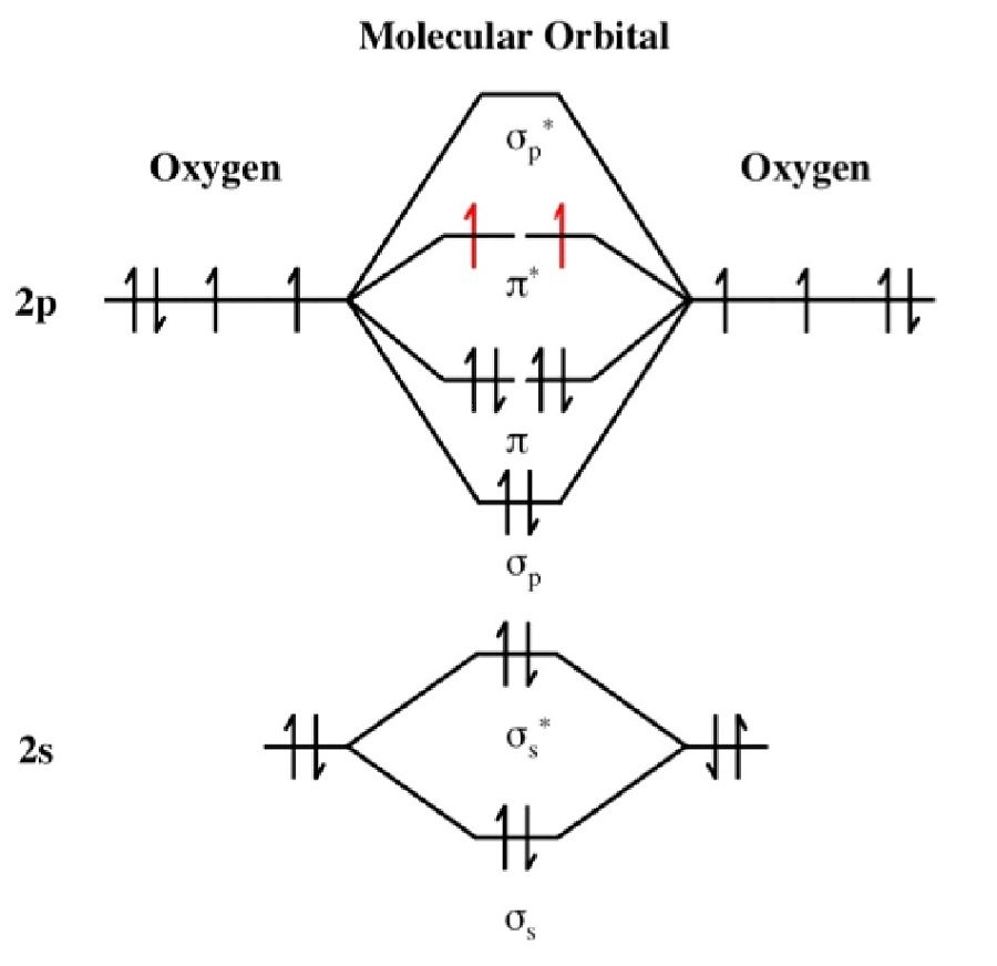 MO Diagram for O2