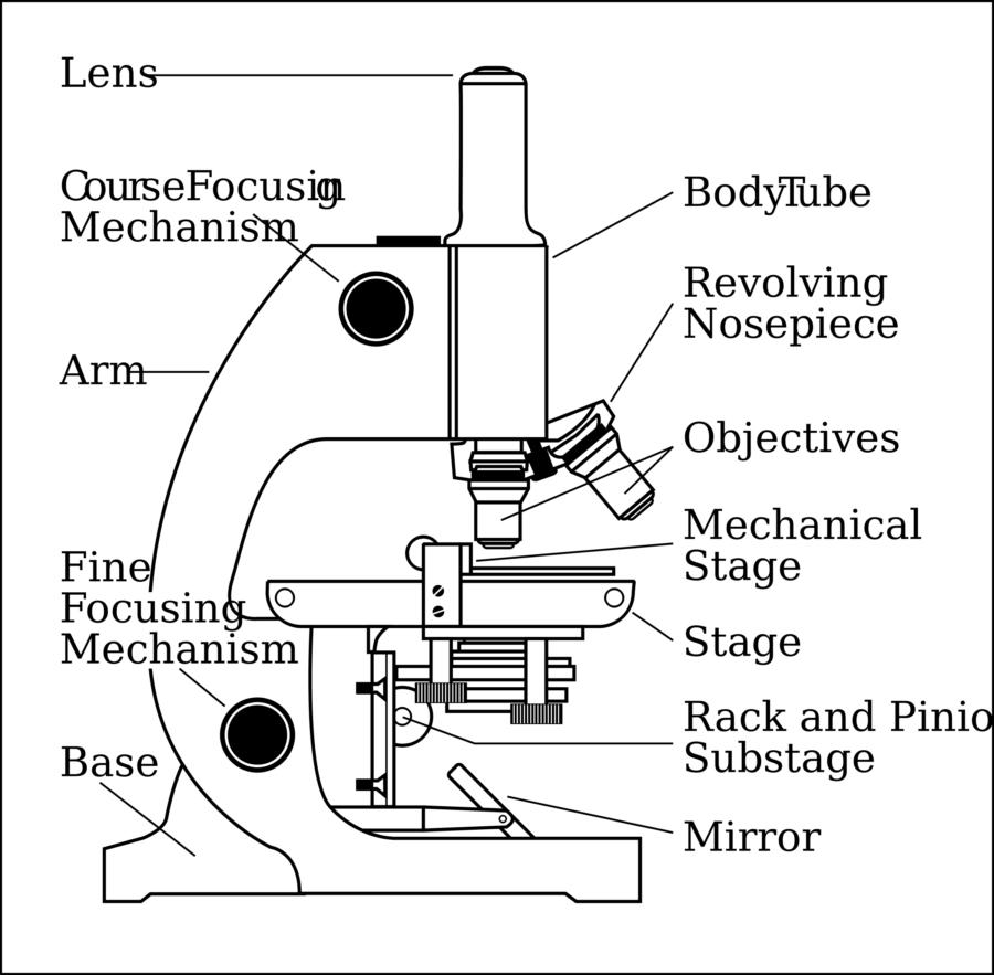 Diagram of Microscope to Print
