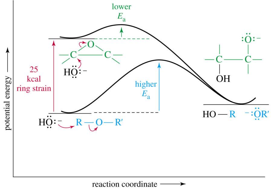 Potential Energy Diagram Endothermic