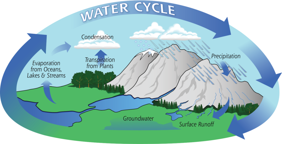 The Water Cycle Diagram Easy