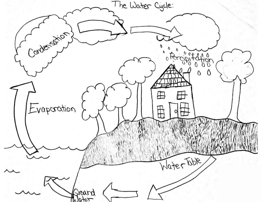 The Water Cycle Diagram Printable