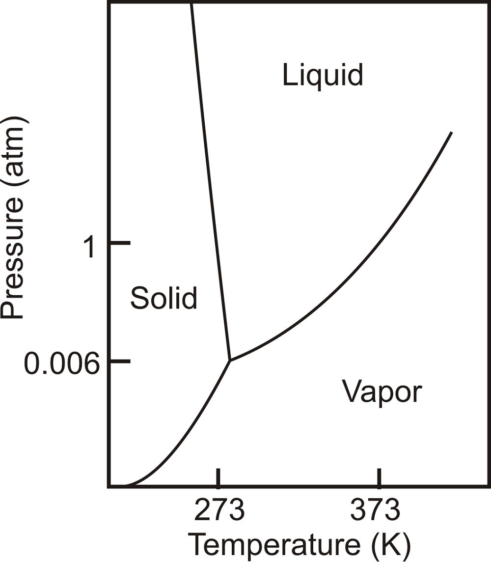 Blank Phase Diagram for Water
