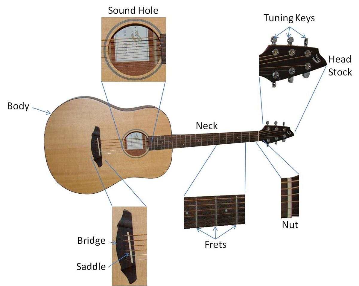 Learn Guitar Parts Diagram