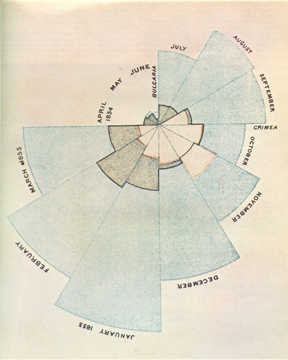 Florence nightingale polar area diagram