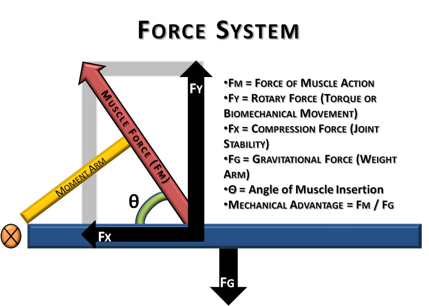 Force Diagrams Basic