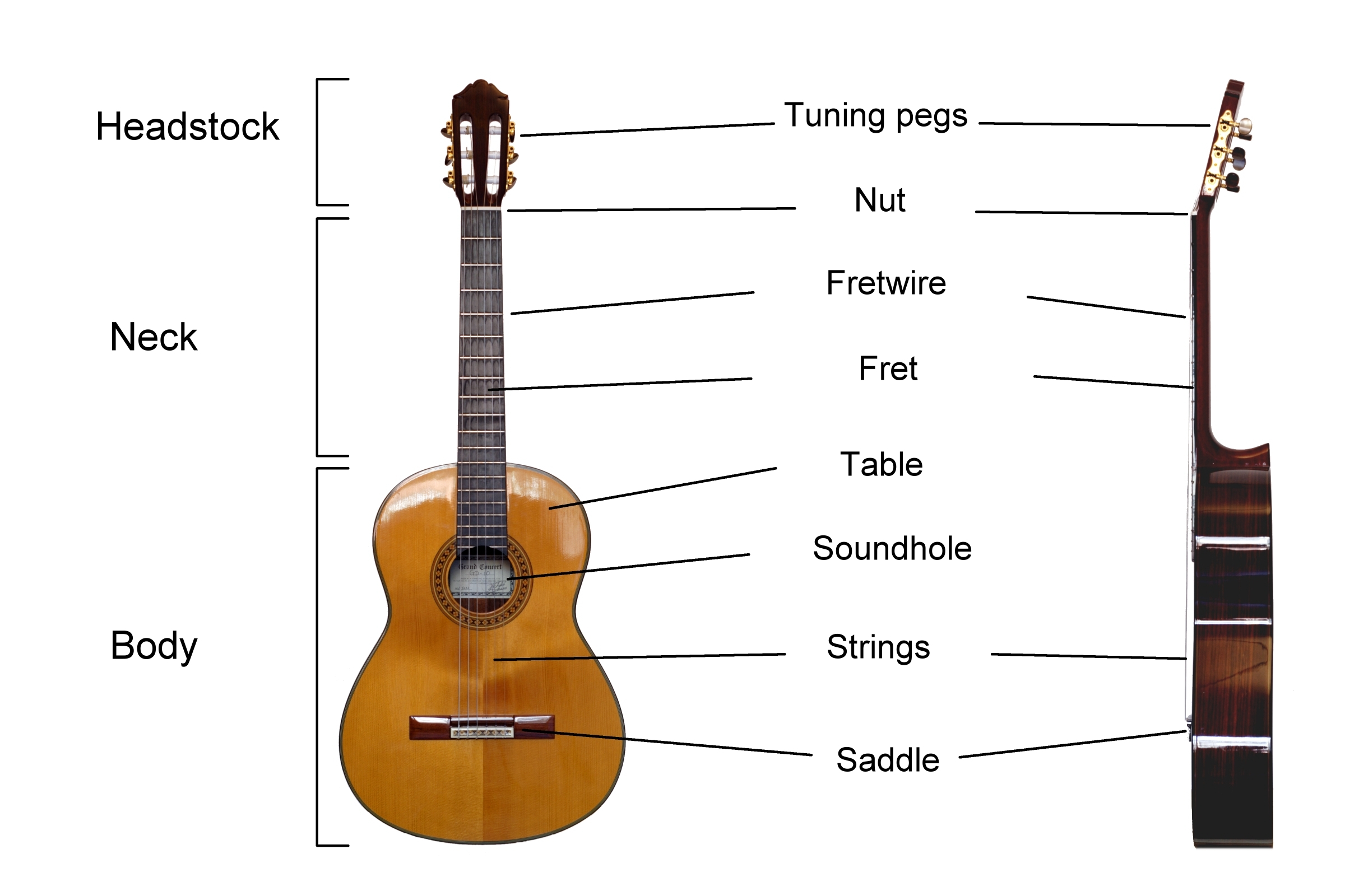 Classical Guitar Diagram
